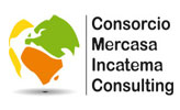 Consorcio Mercasa Incatema Consulting